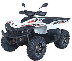 ACCESS ATV 650 LTD Terräng